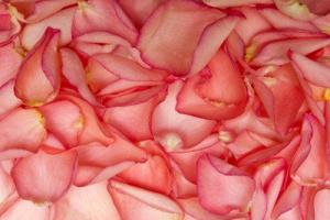 Розовое масло для лица