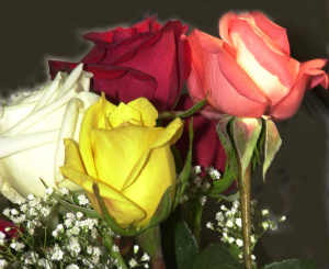 Значения цветов в букете
