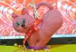 Кот сердце